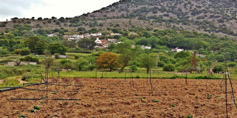 Οργωμένο χωράφι για την παραγωγή της πατάτας και στο βάθος ο Μαγουλάς- Plowed field for the potato production
