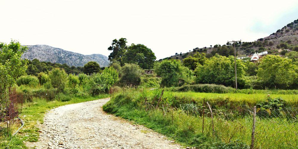 Κεντρικός αγροτικός δρόμος του κάμπου που οδηγεί στο Μαγουλά- Central rural road of the valley leading to Magoulas