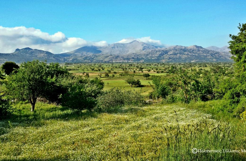 Η θέα του λασιθιώτικου κάμπου από το μονοπάτι του άλσους- The view of lasithi plain from the wood's path
