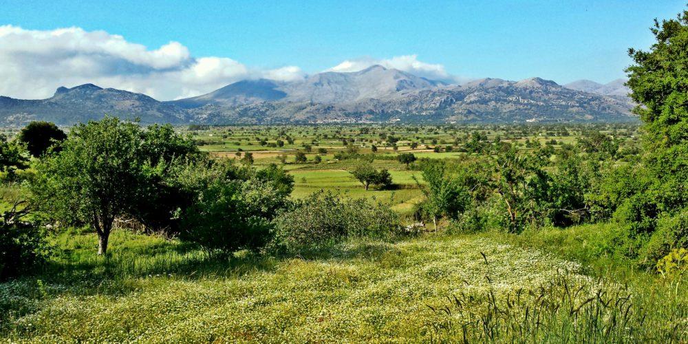 Η θέα του κάμπου από το Μαγουλά- The view of Lasithi's plain from Magoula