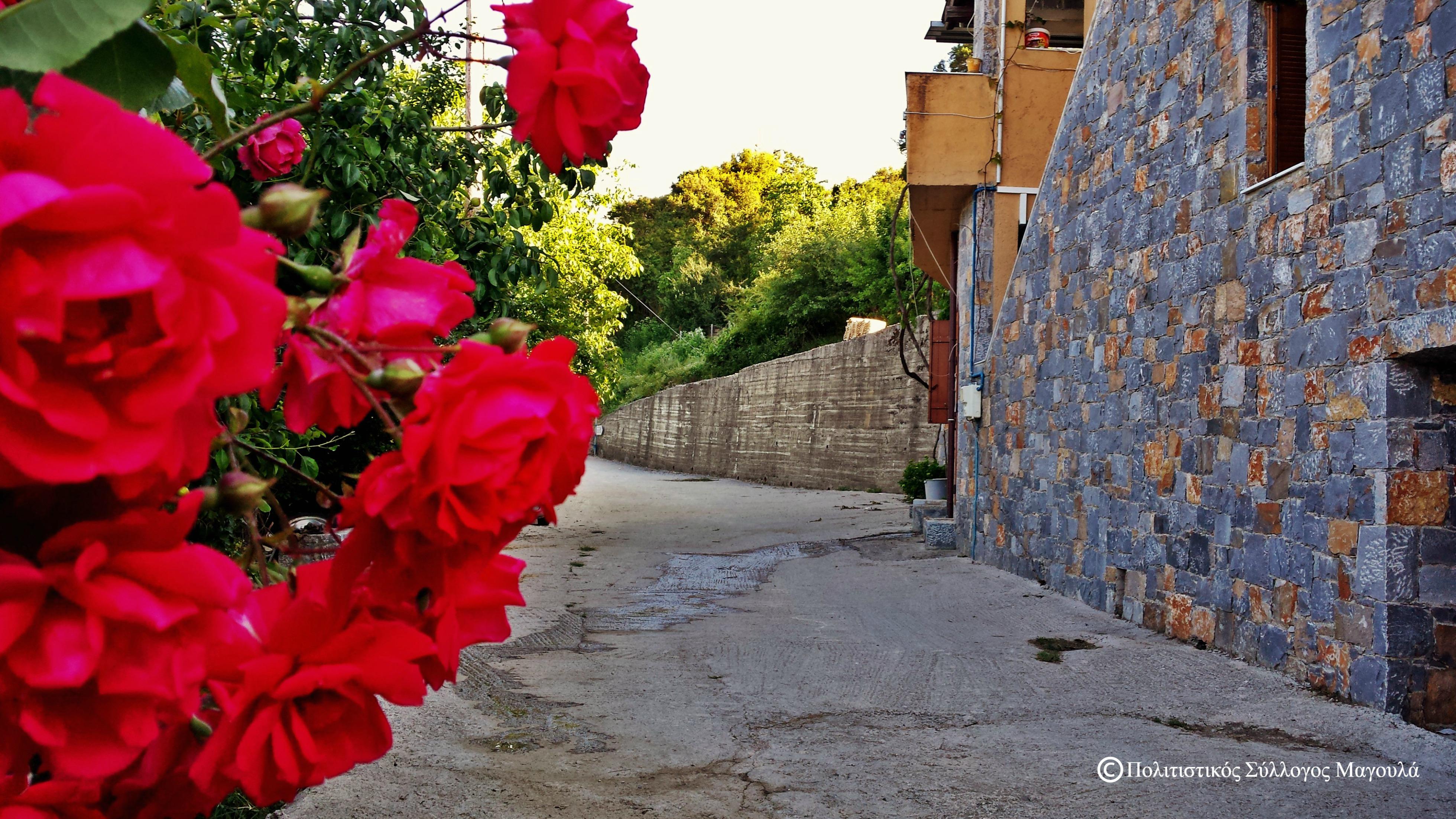 Περπατώντας μέσα στο χωριό- Walking inside the village
