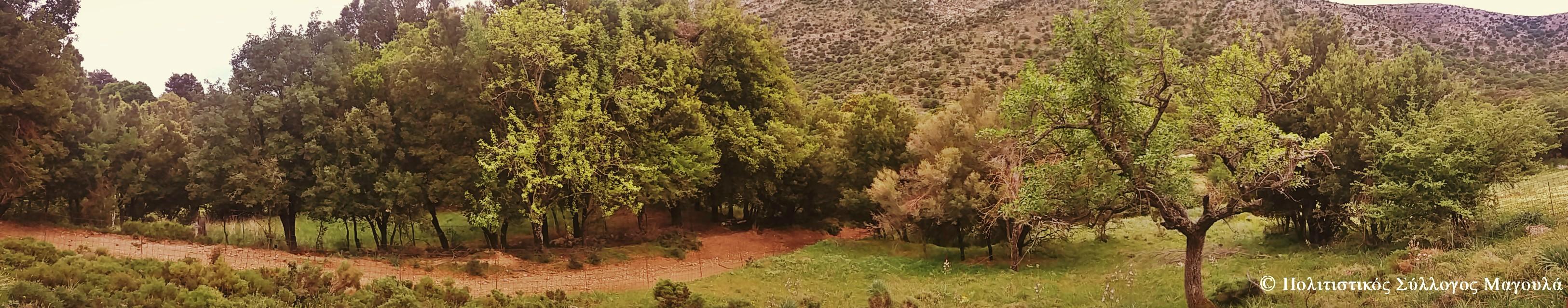 Περιοχή του Κλώρου- Area of Kloros