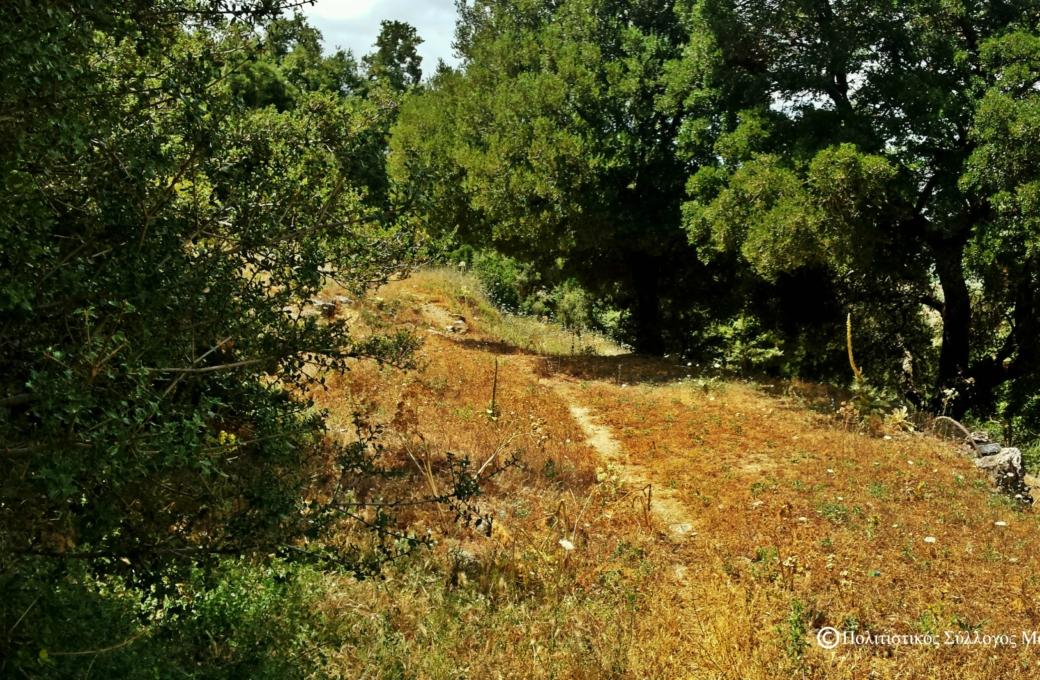 Δρόμος από το Μαγουλά προς τα Ριμάμπελα- Path from Magoula to Rimabela